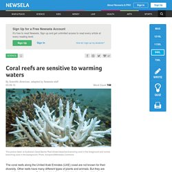 Coral reefs are sensitive to warming waters