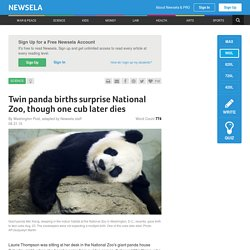 Twin panda births surprise National Zoo, though one cub later dies