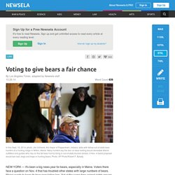 Voting to give bears a fair chance
