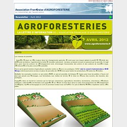 newsletter AFAF - Avril 2012