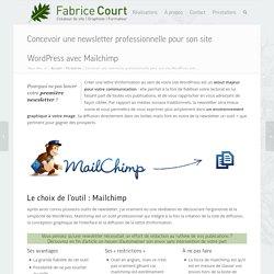 Créer votre newsletter avec Mailchimp et WordPress