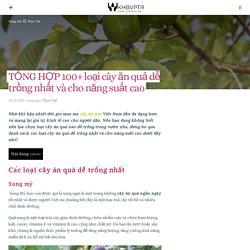 TỔNG HỢP 100+ loại cây ăn quả dễ trồng nhất và cho năng suất cao – KHBVPTR