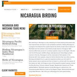 Nicaragua Bird Watching - One Week Birding Tour in Nicaragua
