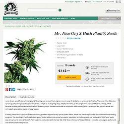 Mr. Nice G13 X Hash Plant® Seeds