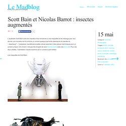 Scott Bain et Nicolas Barrot : insectes augmentés