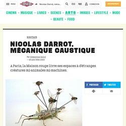 Nicolas Darrot, mécanique caustique
