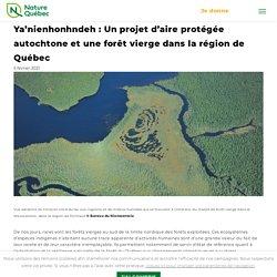 Mélodie - Ya'nienhonhndeh : Un projet d'aire protégée autochtone et une forêt vierge dans la région de Québec - Nature Québec : Nature Québec
