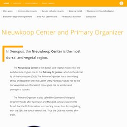 Nieuwkoop Center and Primary Organizer