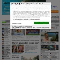 Het laatste buitenlandse nieuws leest u op Telegraaf.nl [buitenland]