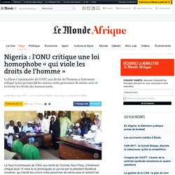 Nigeria : l'ONU critique une loi homophobe «qui viole les droits de l'homme»