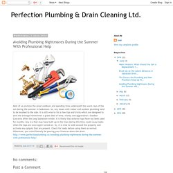 Avoiding Plumbing Nightmares During the Summer With Professional Help