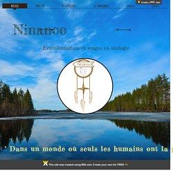 ninanoo