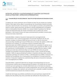 """INSTITUT DANONE - """"Nitrates, nitrites, N-nitrosamines et cancers gastriques dans le Finistère : approche expérimentale"""""""