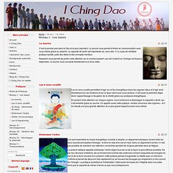 I Ching Dao - Qi Gong - Niveau I - Les bases