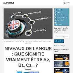 Niveaux de langue : que signifie vraiment être A2, B1, C1... ?