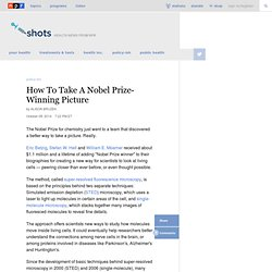 How To Take A Nobel Prize-Winning Picture