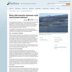 NOFIMA 07/11/11 Does ISA transfer between wild and farmed salmon?