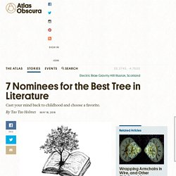 7 Nominees for the Best Tree in Literature