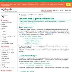 Les noms dans la grammaire française
