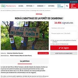 Non à l'abattage de la forêt de Casabona !