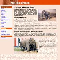 Non aux cirques