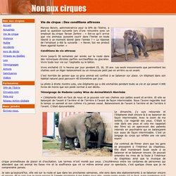 Non aux cirques : Vie de cirque