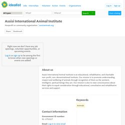 Nonprofit (Oakland): Assisi International Animal Institute