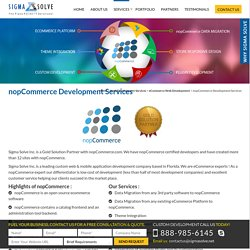 nopCommerce Development Services, nopCommerce Solution