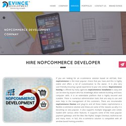 Custom nopCommerce web design & development company
