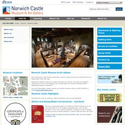 Norfolk Museums Service - Norwich Castle