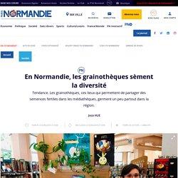 En Normandie, les grainothèques sèment la diversité - Société