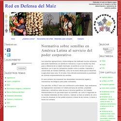 Normativa sobre semillas en América Latina al servicio del poder corporativo