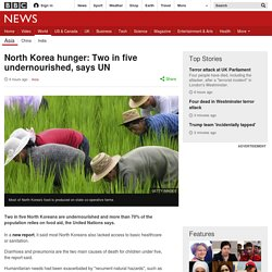 North Korea hunger: Two in five undernourished, says UN