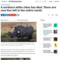 A northern white rhino has died. There are now five left in the entire world.