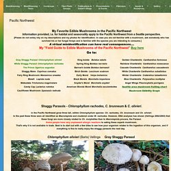 Mushroaming - Daniel Winkler's Webpages Dedicated to Mushrooms and Nature Tours