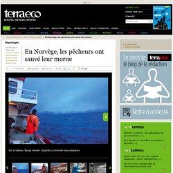 TERRA ECO 29/04/15 En Norvège, les pêcheurs ont sauvé leur morue