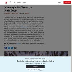 Norway's Radioactive Reindeer