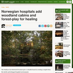 Norwegian hospitals add woodland cabins and forest-play for healing