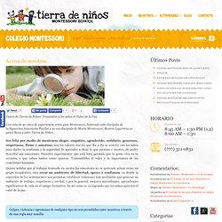 Colegio Montessori en Cuernavaca Tierra de Niños