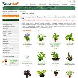 Les Nostres Plantes - Botiga online - Totes les plantes - Pàmiesvitae