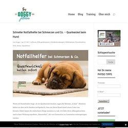 Schneller Notfallhelfer bei Schmerzen und Co. - Quarkwickel beim Hund