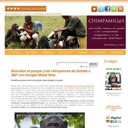Descubre el parque y los chimpancés de Gombe a 360º con Google Street View