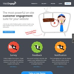 Get feedback/support queries and conduct short targeted surveys from visitors on your website - WebEngage