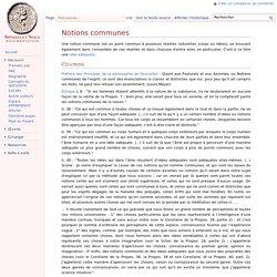 Notions communes - Spinoza et Nous