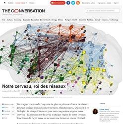 Notre cerveau, roi des réseaux
