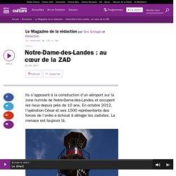 Notre-Dame-des-Landes : au cœur de la ZAD