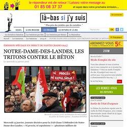 NOTRE-DAME-DES-LANDES, LES TRITONS CONTRE LE BÉTON
