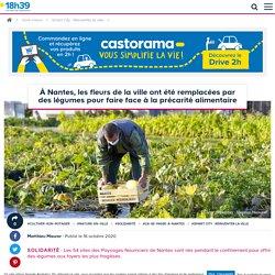 Les Paysages Nourriciers de Nantes offrent des légumes frais aux familles les plus fragilisées