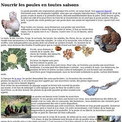 Nourrir les poules en toutes saisons