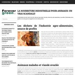 La nourriture industrielle pour animaux: un vrai scandale!